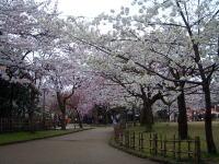 20060416_02.jpg