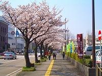 2008_0406_09.jpg
