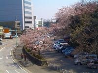 2008_0406_10.jpg