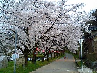 2008_0413_02.jpg