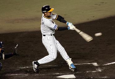 baseball08-11b.jpg