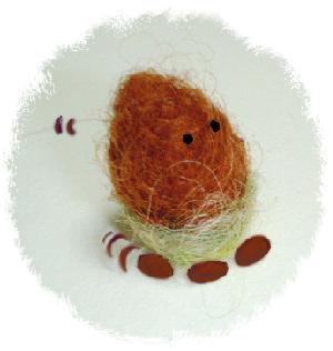 dame acorn