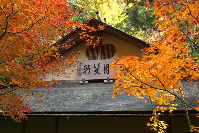 北鎌倉15