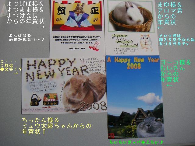 素敵な年賀状ありがとうございます♪