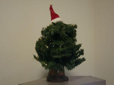 普通のツリーですが