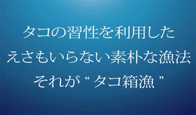 20070509_2.jpg