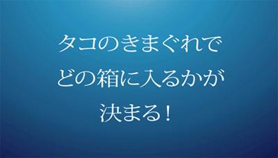 20070509_3.jpg