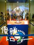 torofee.jpg