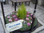花の万華鏡