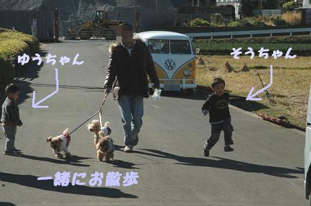 DSC_0950-3.jpg