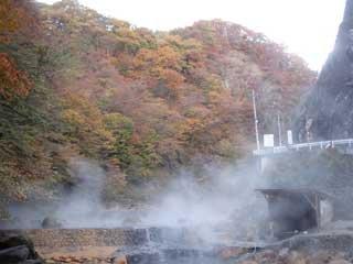 shiriyaki_20051102