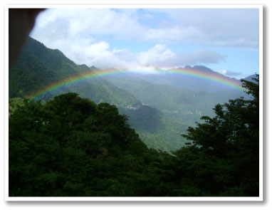 白谷雲水峡虹