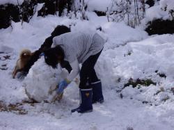 雪だるまを作る姪っ子