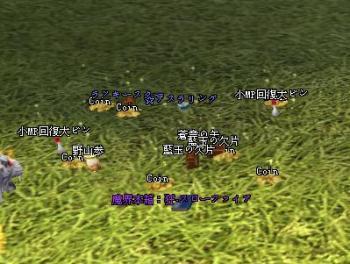 2007-12-22 04-08-38
