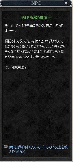 3_20071120011934.jpg