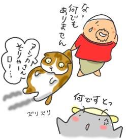 070209_ashica1.jpg