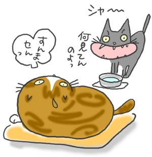 070211_chu.jpg