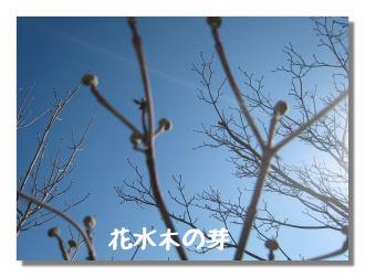 huyuyasumi1.jpg