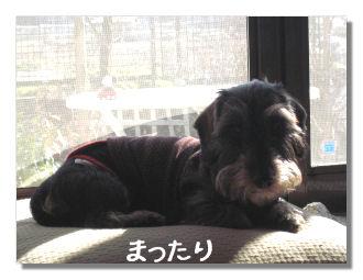 huyuyasumi3.jpg