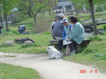 190415・水辺公園3