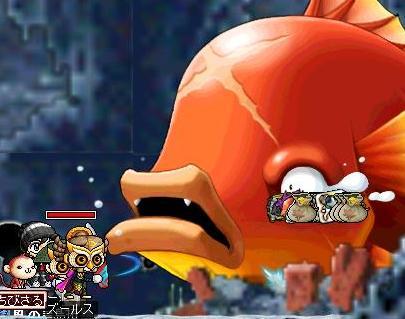金魚444444