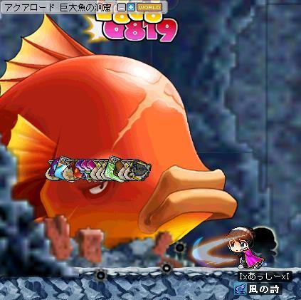 金魚5555555