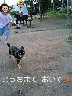 060923_1511~0001-0002-0001.jpg