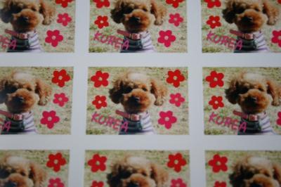 2007.12.30りかちゃんからのプレゼント 002blog