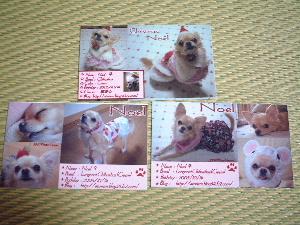 blog2007.11.15-2.jpg