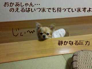 blog2007.11.25-1.jpg