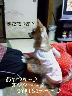 blog2007.12.10-1.jpg