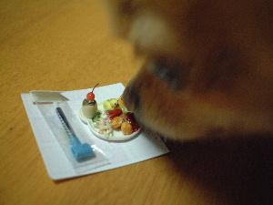 blog2007.12.12.jpg