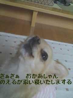 blog2007.12.13-1.jpg