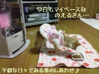blog2007.12.5.jpg