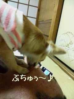 blog20071227.jpg