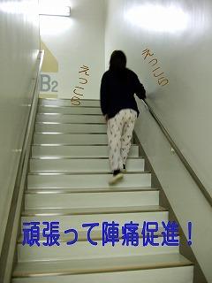 20061206153831.jpg