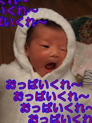 20061209111456.jpg