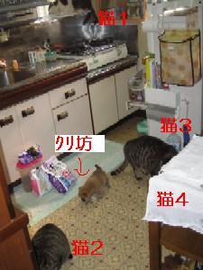 20070413153832.jpg
