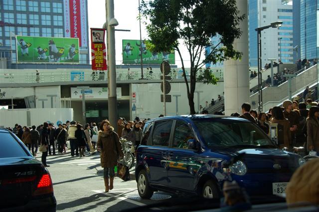 2008・1.2ドッグラン 056 (Small)