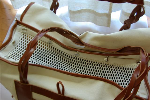 2008・1.2ドッグラン 012 (Small)