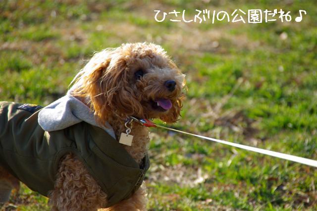 2008.1.6道満 018 (Small)