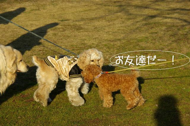 2008.1.6道満 086 (Small)