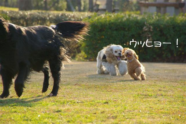 2008.1.6道満 136 (Small)
