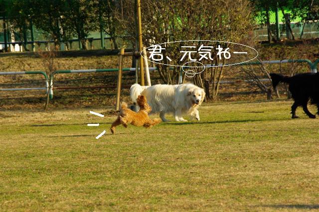 2008.1.6道満 157 (Small)