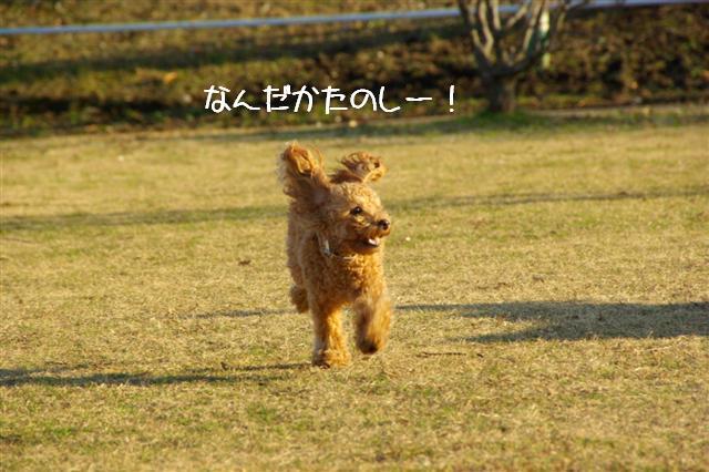 2008.1.6道満 164 (Small)
