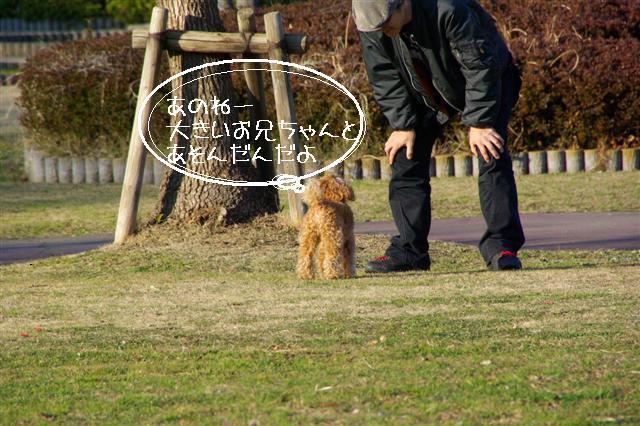 2008.1.6道満 171 (Small)