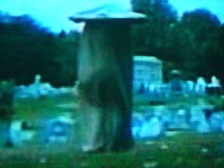 墓場のキノコ