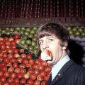 ringoリンゴかじり