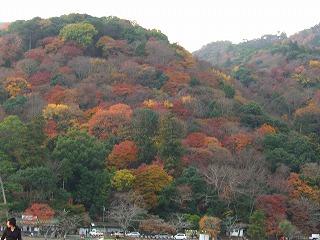 arashiyama04.jpg