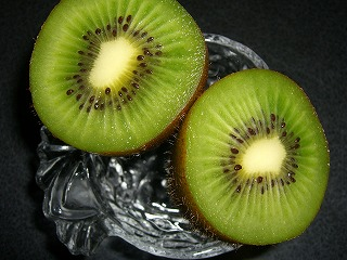 kiwi01.jpg